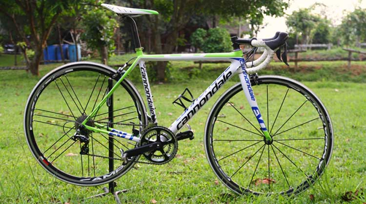 CANNONDALE-pic